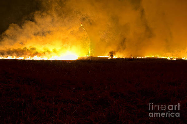 Photograph - Firenado by Crystal Nederman