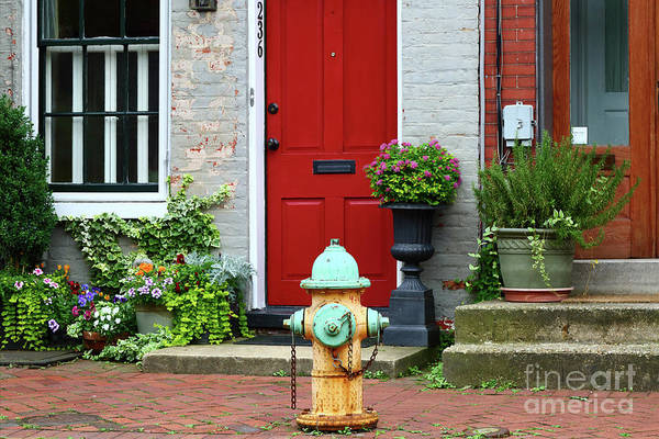 Water Hydrant Photograph - Fireplug In Frederick Maryland by James Brunker