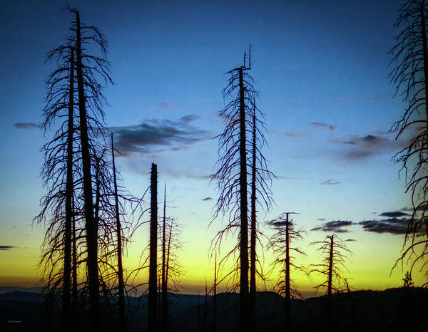 Photograph - Firescape by Ross Henton
