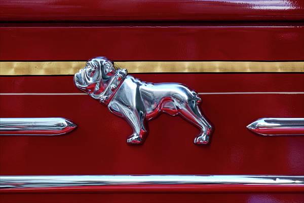 Mac Photograph - Firetruck Bulldog Logo by Robert Ullmann