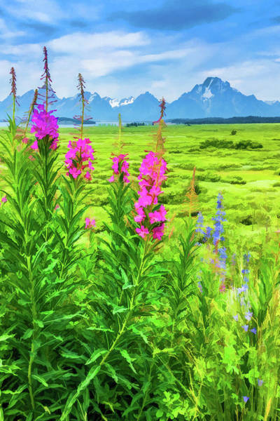Teton National Park Digital Art - Fireweed In The Foreground 2 by Lisa Lemmons-Powers