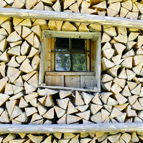 Wall Art - Photograph - Firewood by Frank Tschakert