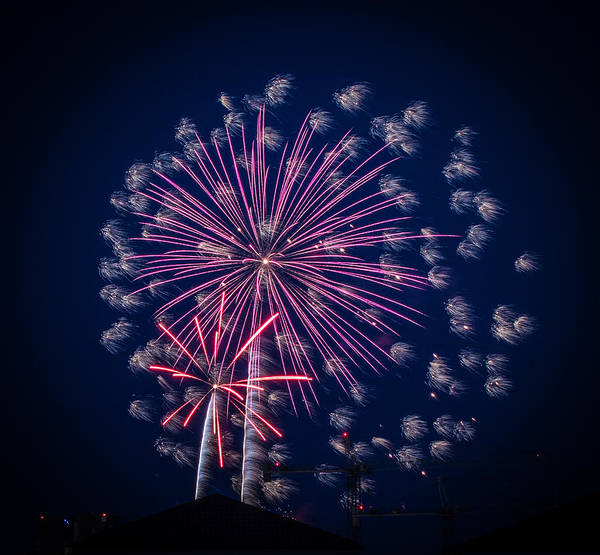 Photograph - Fireworks 2015 Sarasota 37 by Richard Goldman