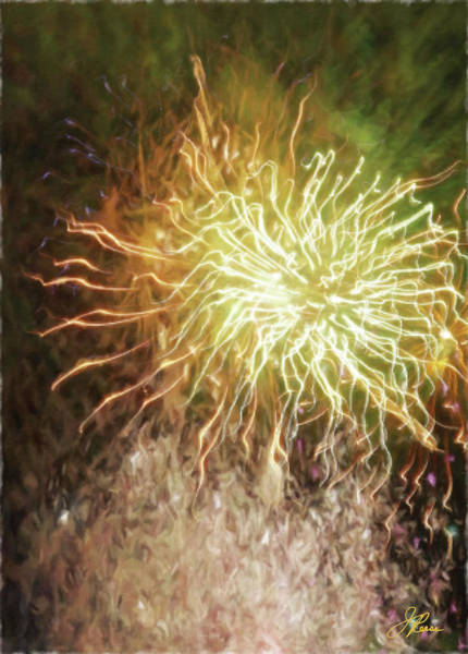 Photograph - Fireworks 9 by Joan Reese