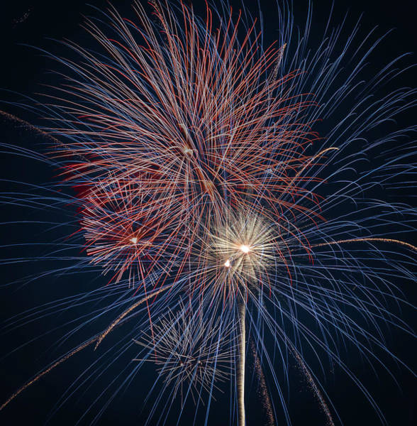 Photograph - Fireworks Celebration Red White Blue by Terry DeLuco