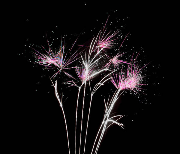 Photograph - Fireworks Explosive Stardust by Scott Lyons