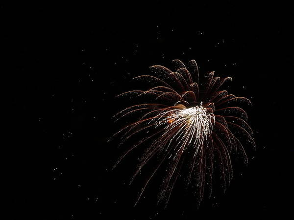 Fireworks From A Boat - 3 Art Print