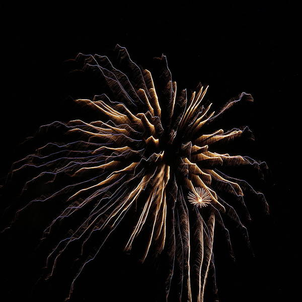 Photograph - Fireworks From A Bot - 15 by Jeffrey Peterson