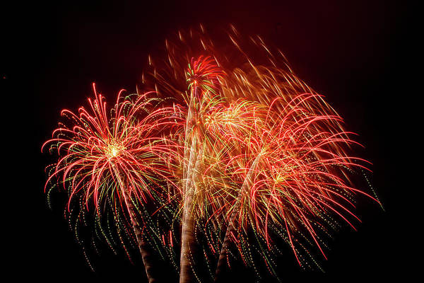 Photograph - Fireworks In The Breeze by Bonnie Follett