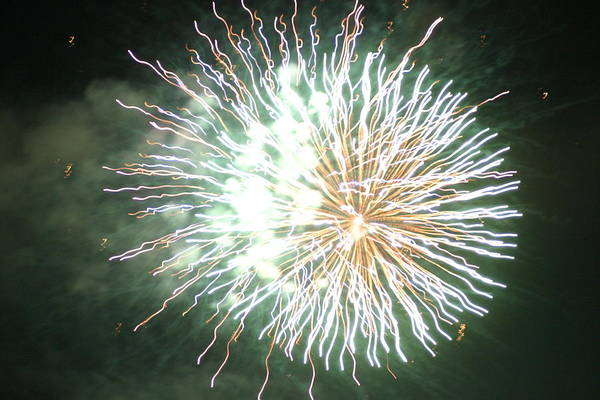 Digital Art - Fireworks In The Park 4 by Gary Baird