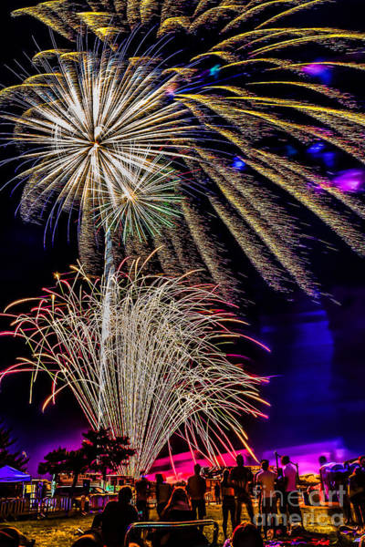 Photograph - Fireworks In The Park by Nick Zelinsky