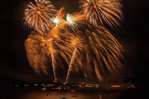 Photograph - Fireworks Palms by Bonnie Follett