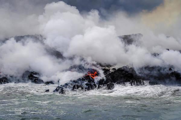 Photograph - Firey Island Growth by Daniel Murphy