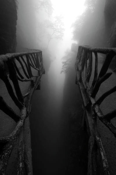 Photograph - First Breath Of Light by Matt Shiffler