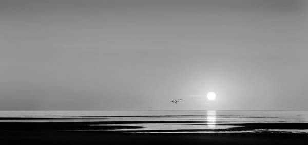 Photograph - First Encounter Beach Cape Cod Bw by Bill Wakeley