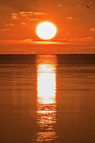 Photograph - First Key West Sunrise 2018 F by Bob Slitzan