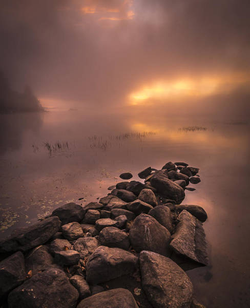 Photograph - First Light At The Lake by Francisco Gomez