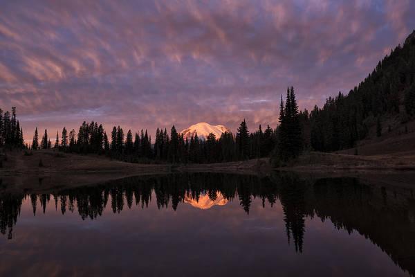 Photograph - First Light On Mount Rainier by Loree Johnson