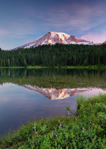 Photograph - First Light On Mount Rainier by Michael Blanchette