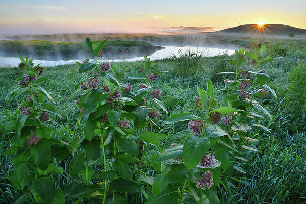 Photograph - First Light On Nippersink Creek In Glacial Park by Ray Mathis