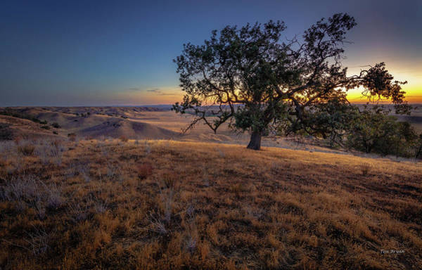 Photograph - First Light On The  Canyon Ranch by Tim Bryan