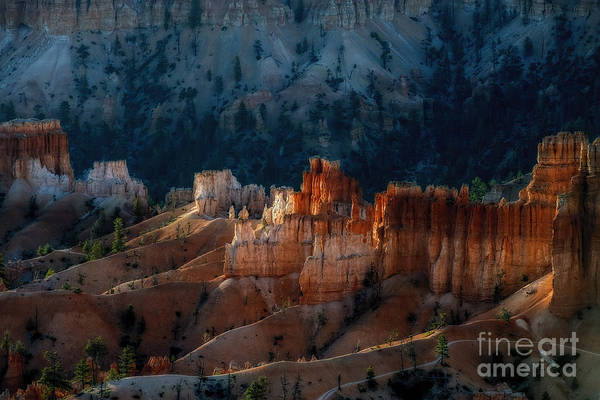 Photograph - First Light On The Rocks by Dan Friend