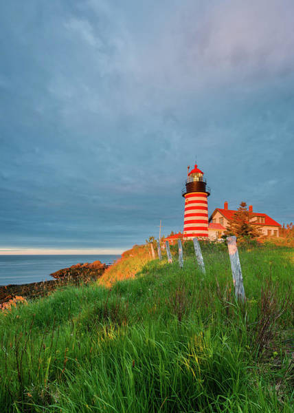 Photograph - First Light - Vertical by Michael Blanchette