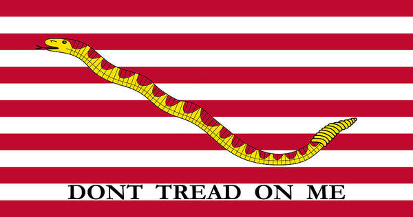 Revolution Wall Art - Mixed Media - First Navy Jack by War Is Hell Store