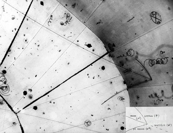 Wall Art - Photograph - First Neutrino Interaction, Bubble by Science Source