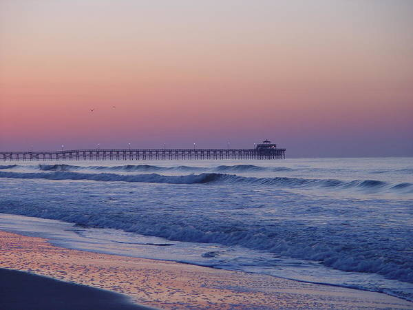 Photograph - First Pier by Ree Reid