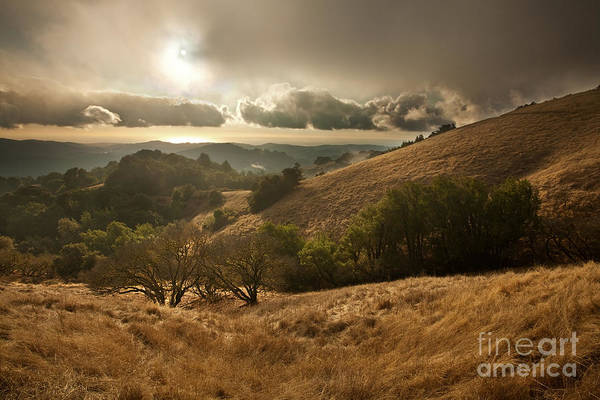 Northern California Wall Art - Photograph - First Rain by Matt Tilghman