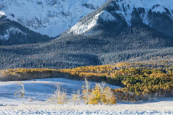 Photograph - First Snow, Last Dollar by Denise Bush