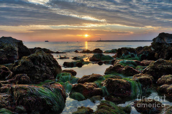 Photograph - First Sunset Of 2018 by Eddie Yerkish