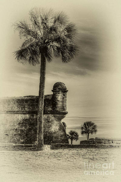 St Augustine Photograph - First Watch- Sepia by Marvin Spates