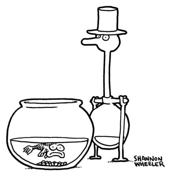 Drought Drawing - Fish And Drinking Bird by Shannon Wheeler