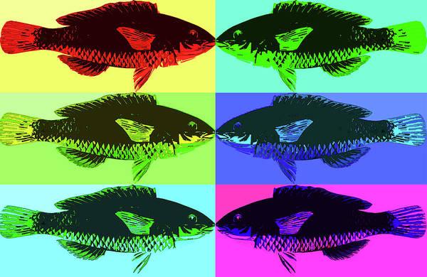 Cyan Digital Art - Fish Dinner Pop Art by Nancy Merkle