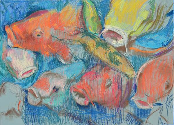 Primary Colors Drawing - Fish Faces by Aletha Kuschan