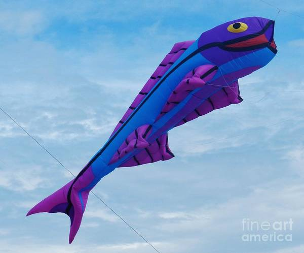 Flying A Kite Photograph - Fish Fly by Snapshot Studio