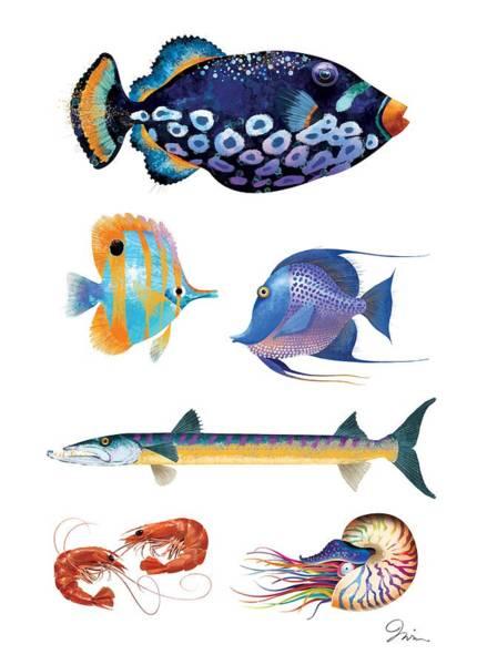 Shrimp Digital Art - Fish Poster 001 by Trevor Irvin