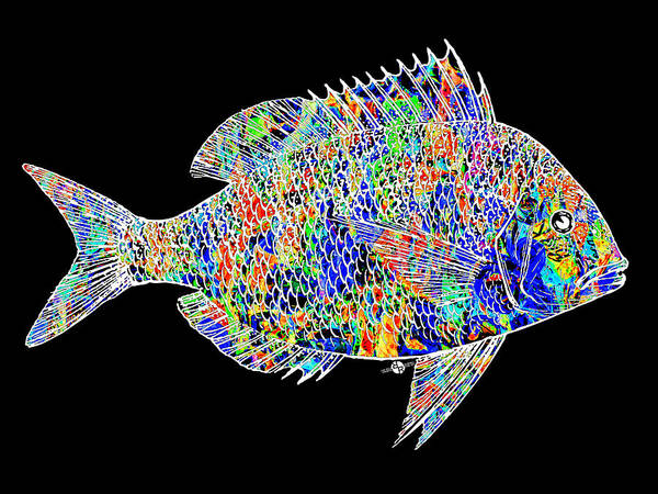 Painting - Fish Study 2 by Tony Rubino