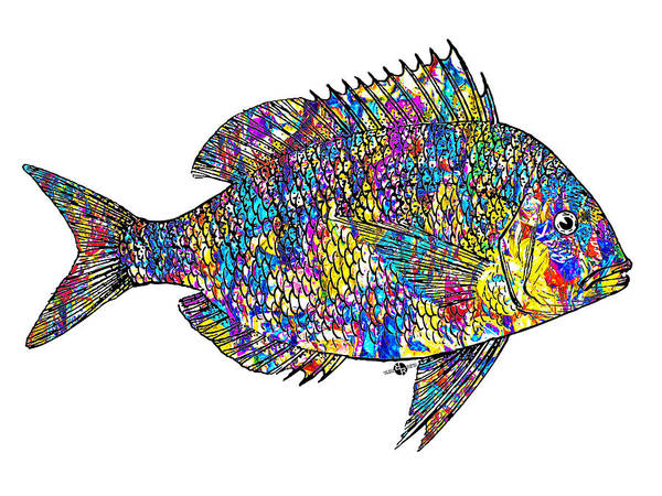 Painting - Fish Study 4 by Tony Rubino
