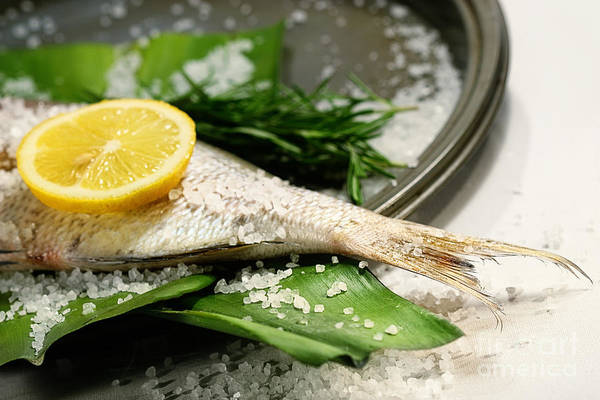 Photograph - Fish Tale With Lemon Salt And Herbs by Sandra Cunningham