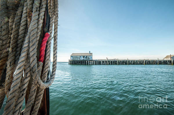 Photograph - Fisherman's Wharf by Michael James