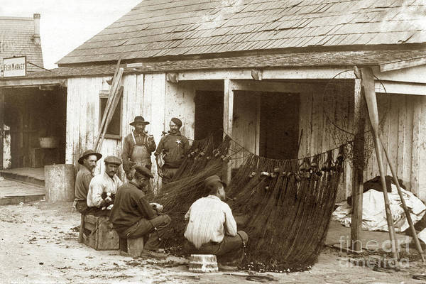 Photograph - Fishermen Repairing Nets Santa Cruz Circa 1907 by California Views Archives Mr Pat Hathaway Archives