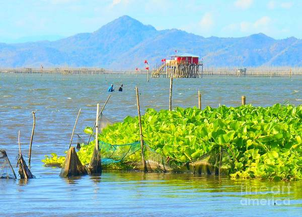 Photograph - Fishermen Walking In The Laguna De Bay Lake by Christopher Shellhammer