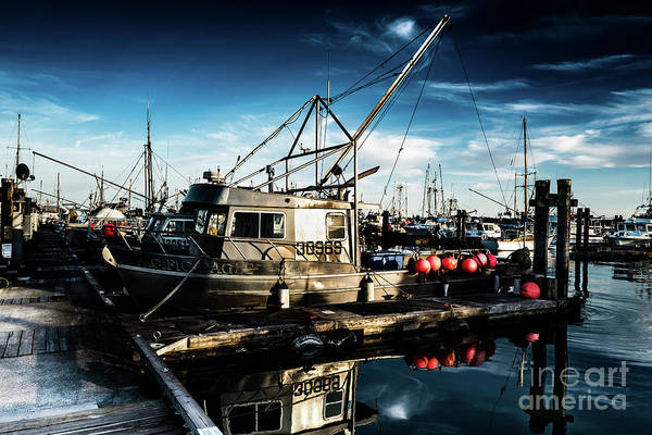 Photograph - Salmon Fishing Boat by Miles Whittingham