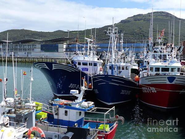 Photograph - Fishing Boats - Santona Harbour by Phil Banks