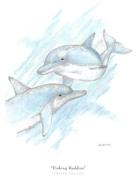 Dolphins Wall Art - Drawing - Fishing Buddies by David Weaver