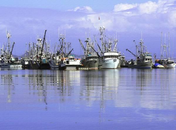 Photograph - Fishing Fleet Vancouver Island Bc by Barbara St Jean