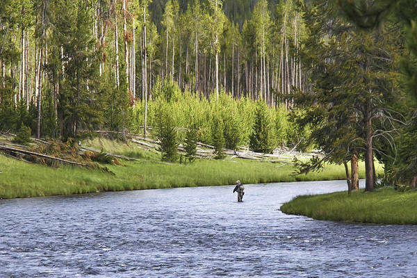 Photograph - Fishing In Yellowstone by Wes and Dotty Weber